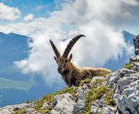Bavarian Alps Challenge Trek Picture 3