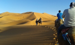 Ride The Sahara 4 Day Picture 3