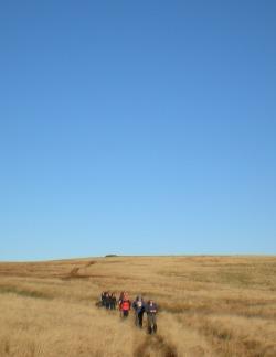 Dartmoor 10 Tors Challenge Picture 3