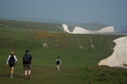 Walk the South Downs Way Picture 2