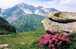 Vanoise Alpine Trek Picture 2