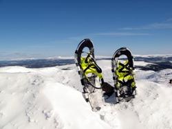 Slovenia Snowshoe Picture 2