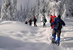 Slovenia Snowshoe Picture 3